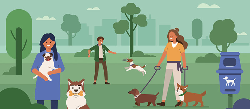 Image of The Health Benefits of Having a Pet