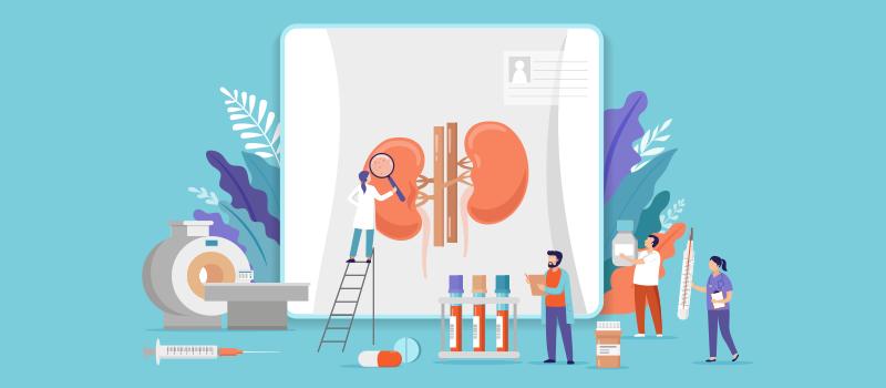 kidney research cartoon